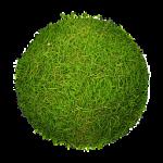 Травяные ноты